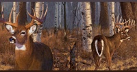 877662 Deer in The Woods Wallpaper Border FZ4460b <br> CLEARANCE!! QUANTITIES LIMITED!!