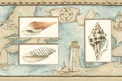 877767 Seashells Wallpaper Border BV021141b <br> CLEARANCE!! QUANTITIES LIMTIED!!