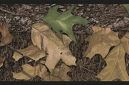 Mossy Oak Camo Peel and Stick Wallpaper Border RMK1070bcs