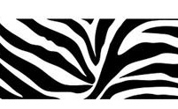 877653 Self Stick Zebra Wallpaper Border Black WPS99052<br> CLEARANCE!! QUANTITIES LIMITED!!