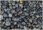 Garden Accessory: Polished River Stones, 2-Inch, Dark. SPECIAL SHIPPING