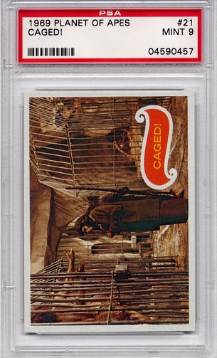 1969 Planet Of The Apes - Caged! #21 PSA 9