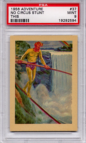 1956 Adventure - No Circus Stunt This #37 PSA 9