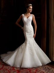Sheer Lace Straps V-Neckline Wedding Gown Theda David Tutera For Mon Cheri 113201