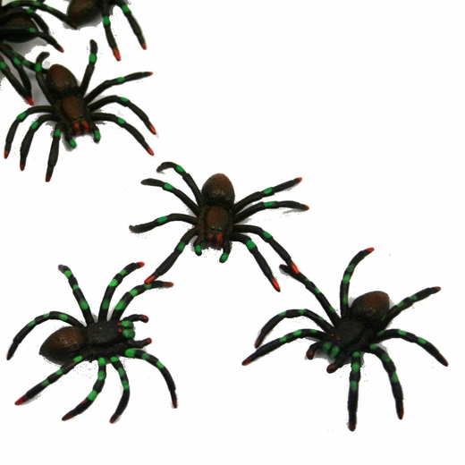 Painted Spiders