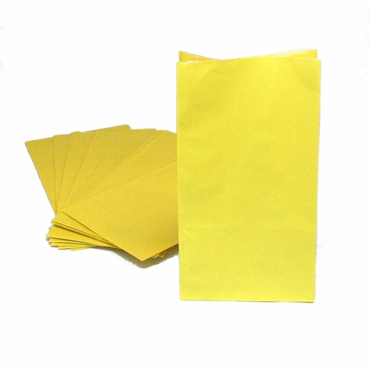 Yellow Paper Treat Bags