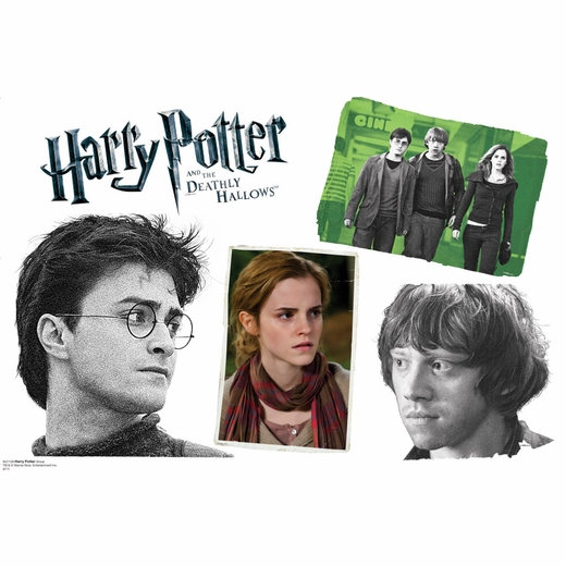 Harry, Hermione and Ron Collage Wall Decor