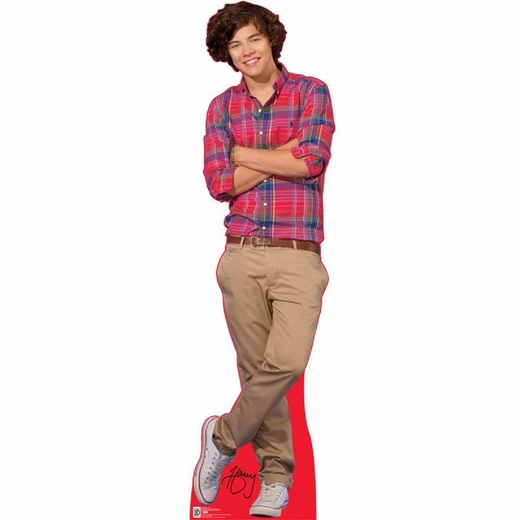One Direction-Harry Lifesized Standup