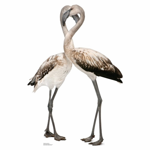 Flamingo Lovebirds Cardboard Standup