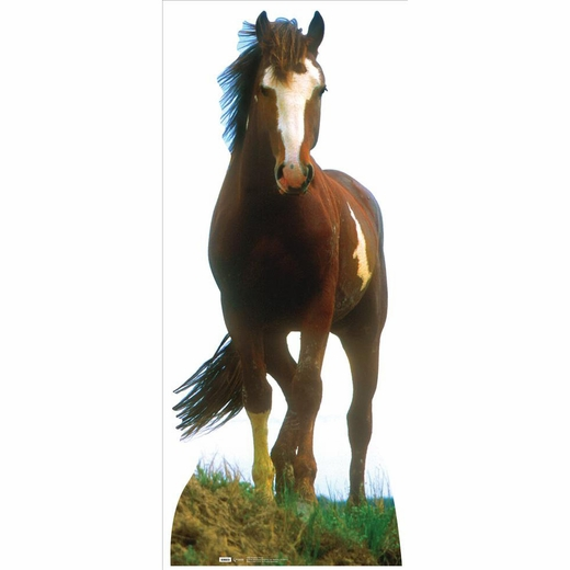 Mustang Horse Lifesized Standup