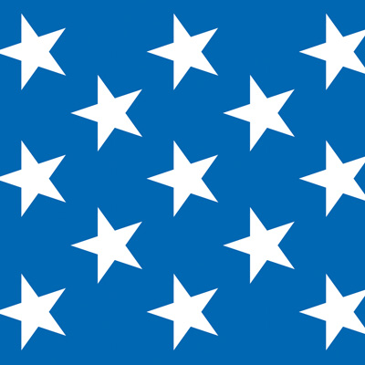 Blue And White Patriotic Stars Backdrop