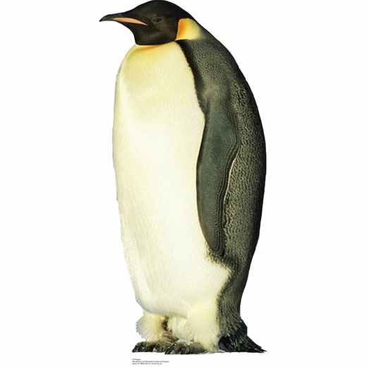 Penguin-Lifesized Standup