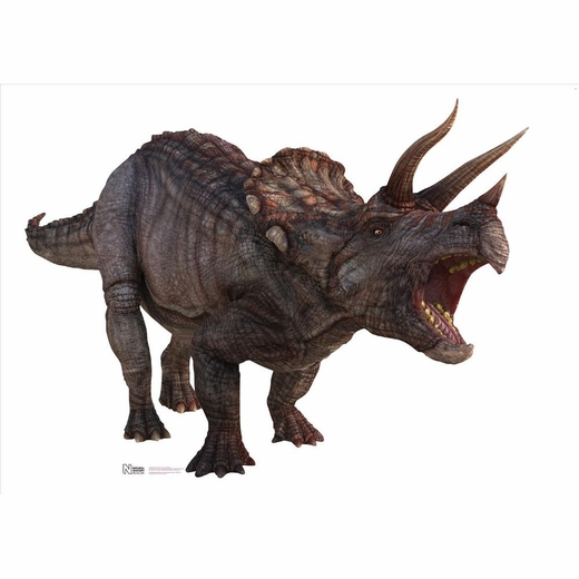 Triceratops-Large Standup