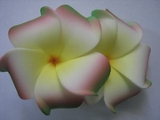 "2 "" Inch Curvy Petals Plumeria Flower Hair Clip White w/ Red Green Tips & Yellow Center"