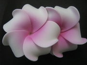 "2 "" Inch Curvy Petals Plumeria Flower Hair Clip White w/ Pink Center"