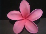 "5 ""STAR POINTED PETAL PLUMERIA FLOWER HAIR PICK Pink"