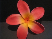 "5 ""STAR POINTED PETAL PLUMERIA FLOWER HAIR PICK Red w/ Yellow Center"