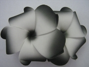 "2 "" Inch Curvy Petals Plumeria Flower Hair Clip White w/ Black Tips"