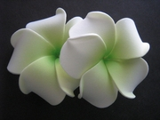 "2 "" Inch Curvy Petals Plumeria Flower Hair Clip White w/ Green Center"