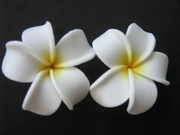 2 pc Mini Pointed Petals Plumeria Flower Hair Clip Set  White Yellow Hub