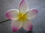 "3"" STAR POINTED PETAL PLUMERIA FLOWER HAIR PICK White w/ Yellow Center &  Purple Tips"
