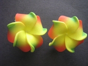 2 pc Mini Petals Plumeria Flower Clip Set -Reggae Style