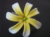 "Mini Tahitian Gardenia ""Tiare""  Flower-White w/ Yellow Center"