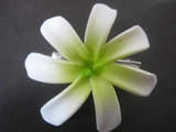 "Mini Tahitian Gardenia ""Tiare""  Flower-White w/ Green Center"