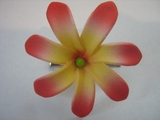 "Mini Tahitian Gardenia ""Tiare""  Flower-Yellow w/ Red Tips"
