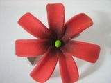 "Mini Tahitian Gardenia ""Tiare""  Flower-Red"