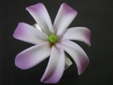 "Mini Tahitian Gardenia ""Tiare""  Flower-White w/ Purple Tips"