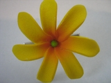 "Mini Tahitian Gardenia ""Tiare""  Flower-Yellow w/ Red Center"