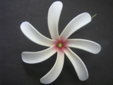 "4"" TAHITIAN GARDENIA TIARE  COLORED FLOWER-Off White w/ Red Hub"