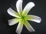 6 Inch Tiare Flower Hair Pick-White w/ Green Center