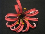 "4""  SPIDER LILY ROLLED DOUBLE PETAL FOAM FLOWER PICK"