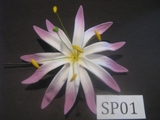 "4.3""  SPIDER LILY DOUBLE STRAIGHT PETALS FLOWER PICK-White w/ Purple Tips"
