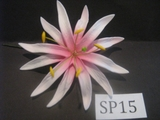 "4.3""  SPIDER LILY DOUBLE STRAIGHT PETALS FLOWER PICK-White w/ Pink Center"