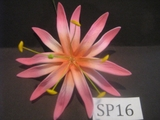 "4.3""  SPIDER LILY DOUBLE STRAIGHT PETALS FLOWER PICK-Pink w/ Sherbet Pink Tips"