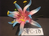 "4.3""  SPIDER LILY DOUBLE Curved PETALS FLOWER PICK-White w/ Pink Center & Blue Tips"