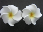 2 pc Mini Petals Plumeria Flower Clip Set  Natural White