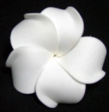 PLUMERIA FLOWER HAIR CLIP Pure White