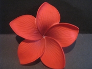 3.5  Inch Pointed Petal Plumeria PLU-B6- Red
