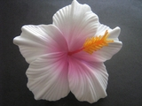 "3.5"" HIBISCUS FOAM FLOWER HAIR PICK-White Pink"