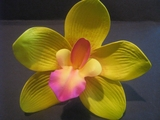 4 Inch Cymbidium Orchid Flower Hair Pick- Yellow