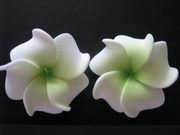 Mini Petals Plumeria Flower Clip Set  Green