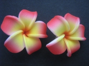 "Mini Petals Plumeria Flower Clip Set Yellow Red Tips 1.25"" Inch"