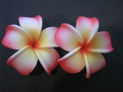 2 pc Mini Pointed Petals Plumeria Flower Hair Clip Set  Ruby White Yellow
