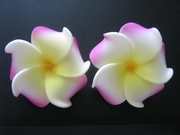 Mini Petals Plumeria Flower Clip Set  Pink Yellow