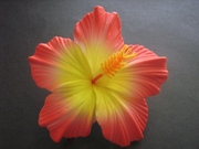 "3.5"" HIBISCUS FOAM FLOWER HAIR PICK-Red w/ Yellow Center"