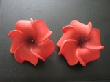 2 pc Mini Petals Plumeria Flower Clip Set  Red